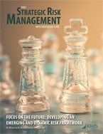 RIMS Strategic Risk Management Implementation Guide-PDF CHAPTER 07
